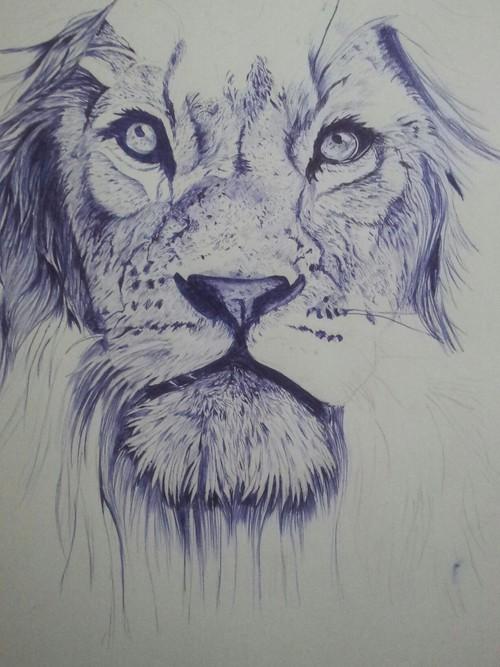 500x667 Ballpoint Lion Uploaded By Khalil Qandil On We Heart It
