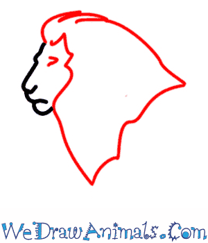 300x350 How To Draw A Lion