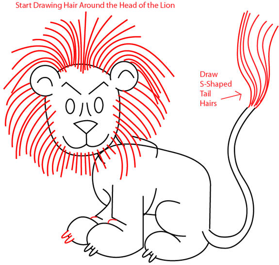 575x547 How To Draw A Cartoon Lion With Easy Step By Step Drawing Tutorial
