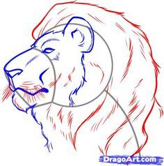 236x238 How To Draw A Lion Step By Step. Drawing Tutorials For Kids