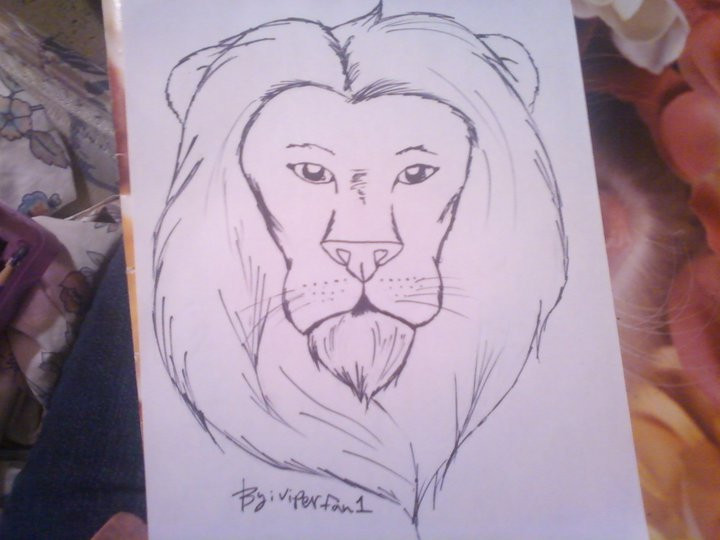 720x540 Lion Head Drawing By Viperfan1