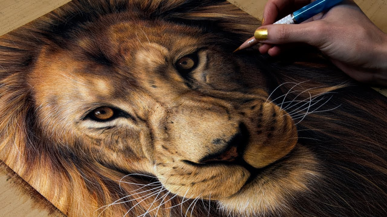 1280x720 Drawing A Lion