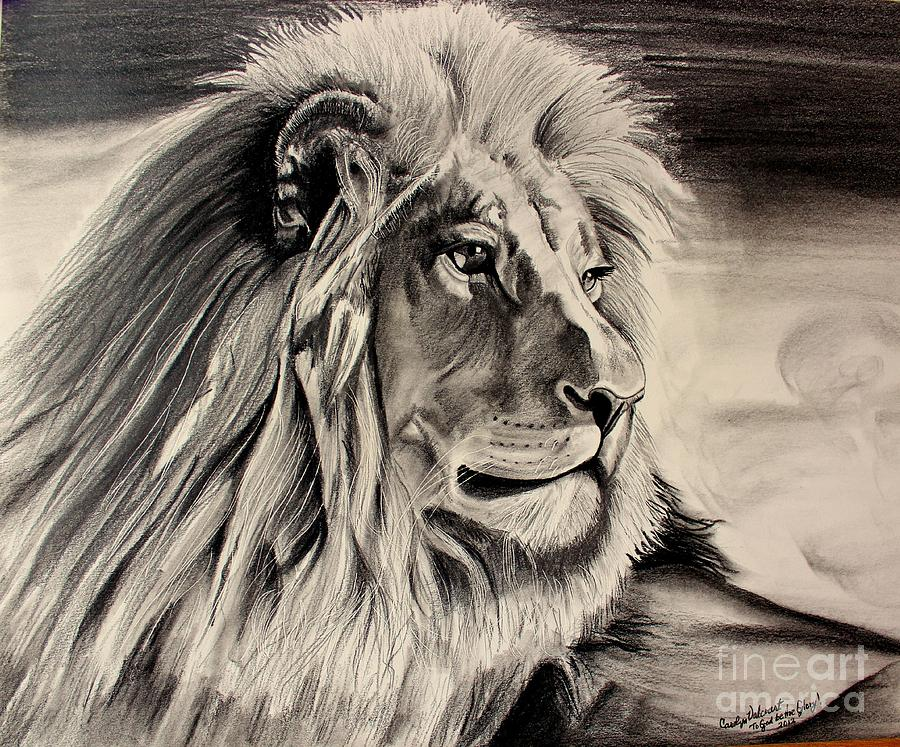 900x747 Eye Of The Lion Drawing By Carolyn Valcourt