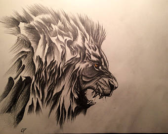 340x270 Lion Pencil Drawing Etsy