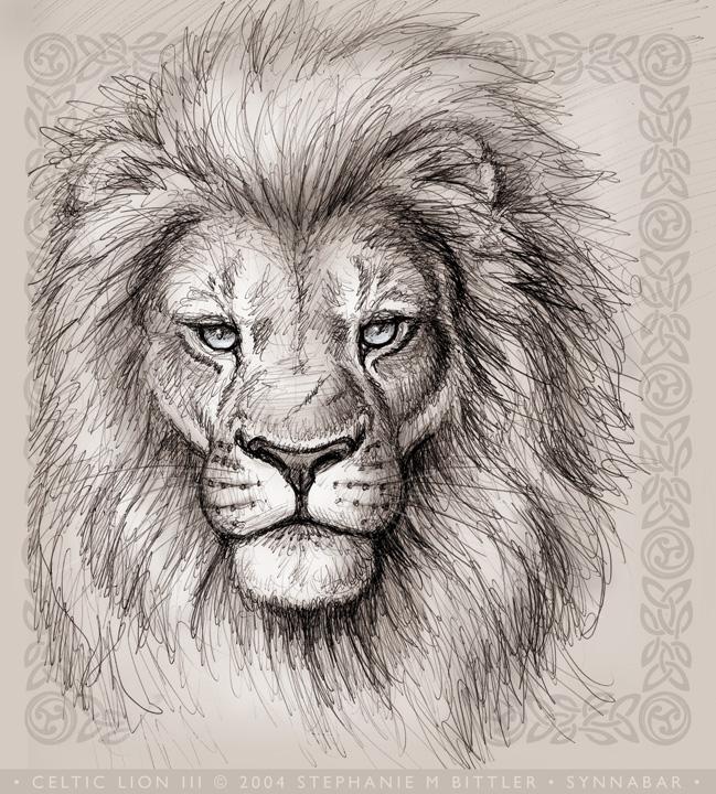 649x720 Celtic Lion Iii By Synnabar