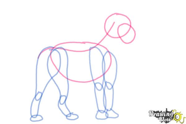 600x400 How To Draw A Lion Step By Step