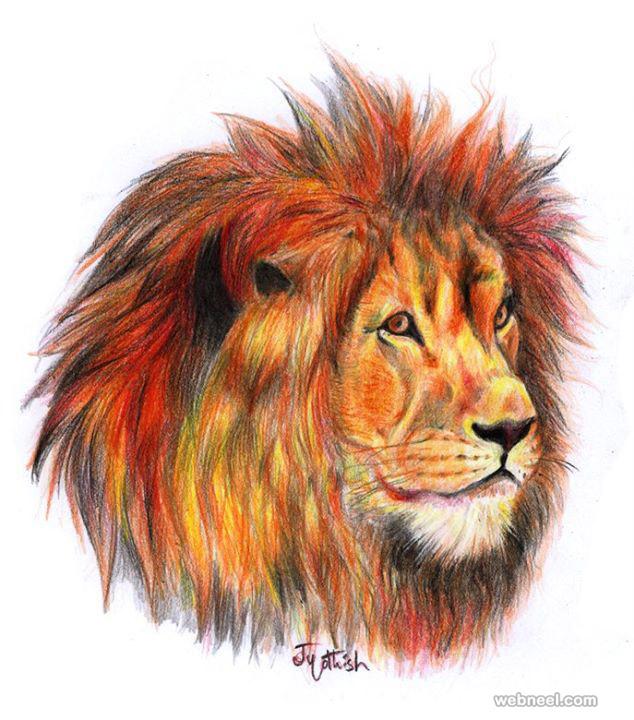 634x720 Color Pencil Drawing By Jyothish Kumar