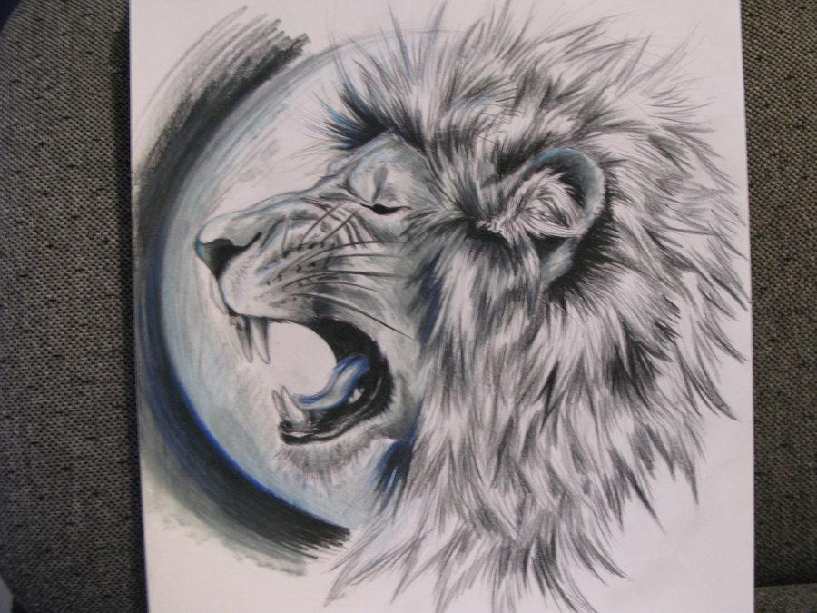 900x675 Lion Tattoo Sketch By Zubiatesuntamnedart
