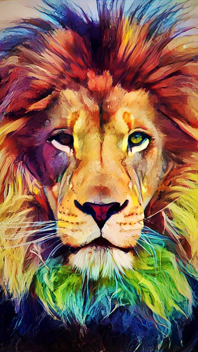 Lion Drawing Wallpaper At Getdrawings Com Free For Personal Use