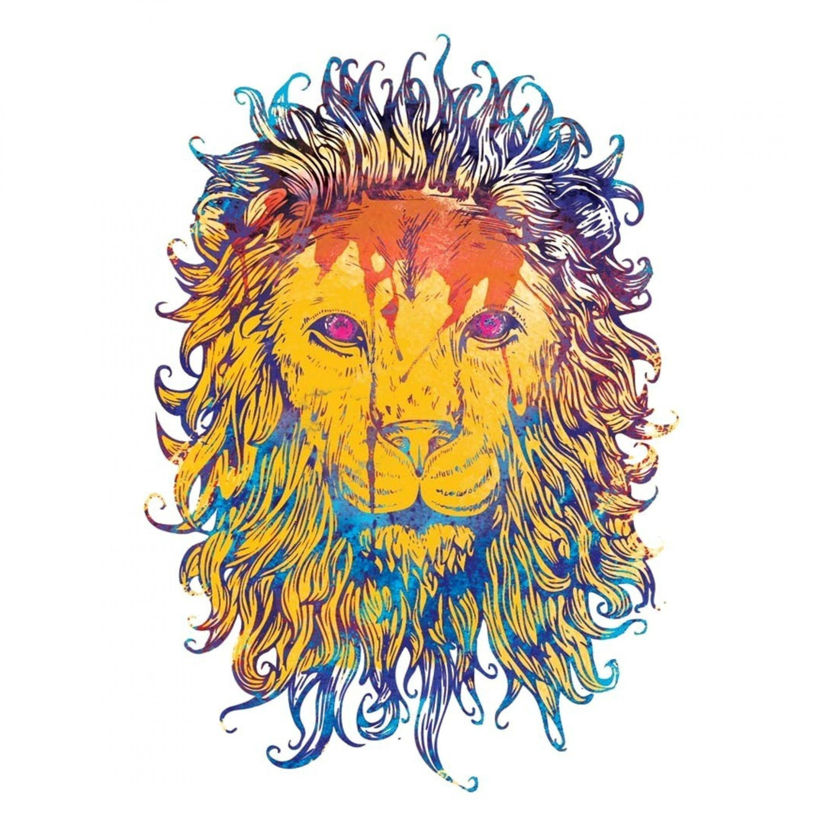 Lion Drawing Wallpaper at GetDrawings