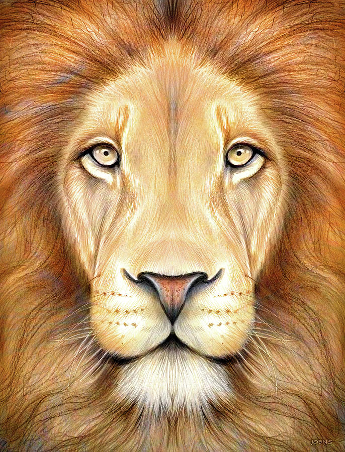 686x900 Lion Head In Color Drawing By Greg Joens