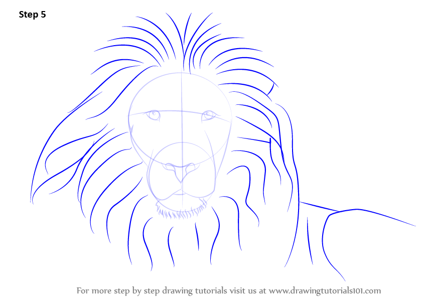 843x596 Lion Face Images For Drawing Wallpapergenk
