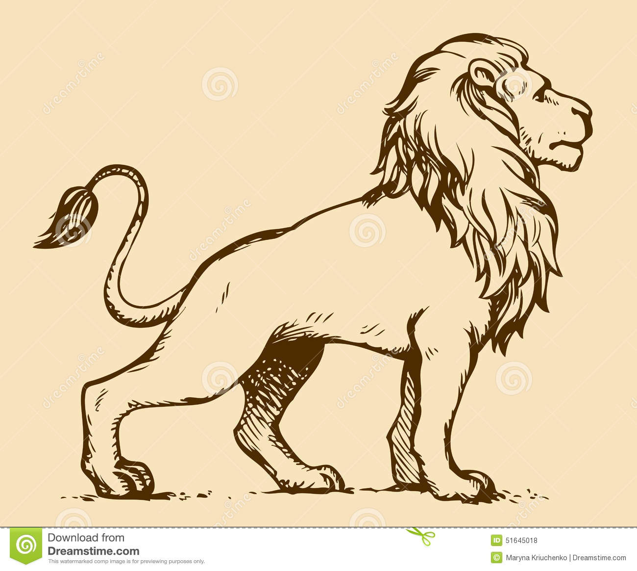 1300x1164 Image Result For Drawing Lion Standing Reference Material