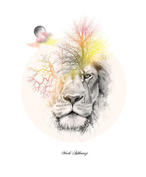 578x700 Lion Drawing By Mark Ashkenazi