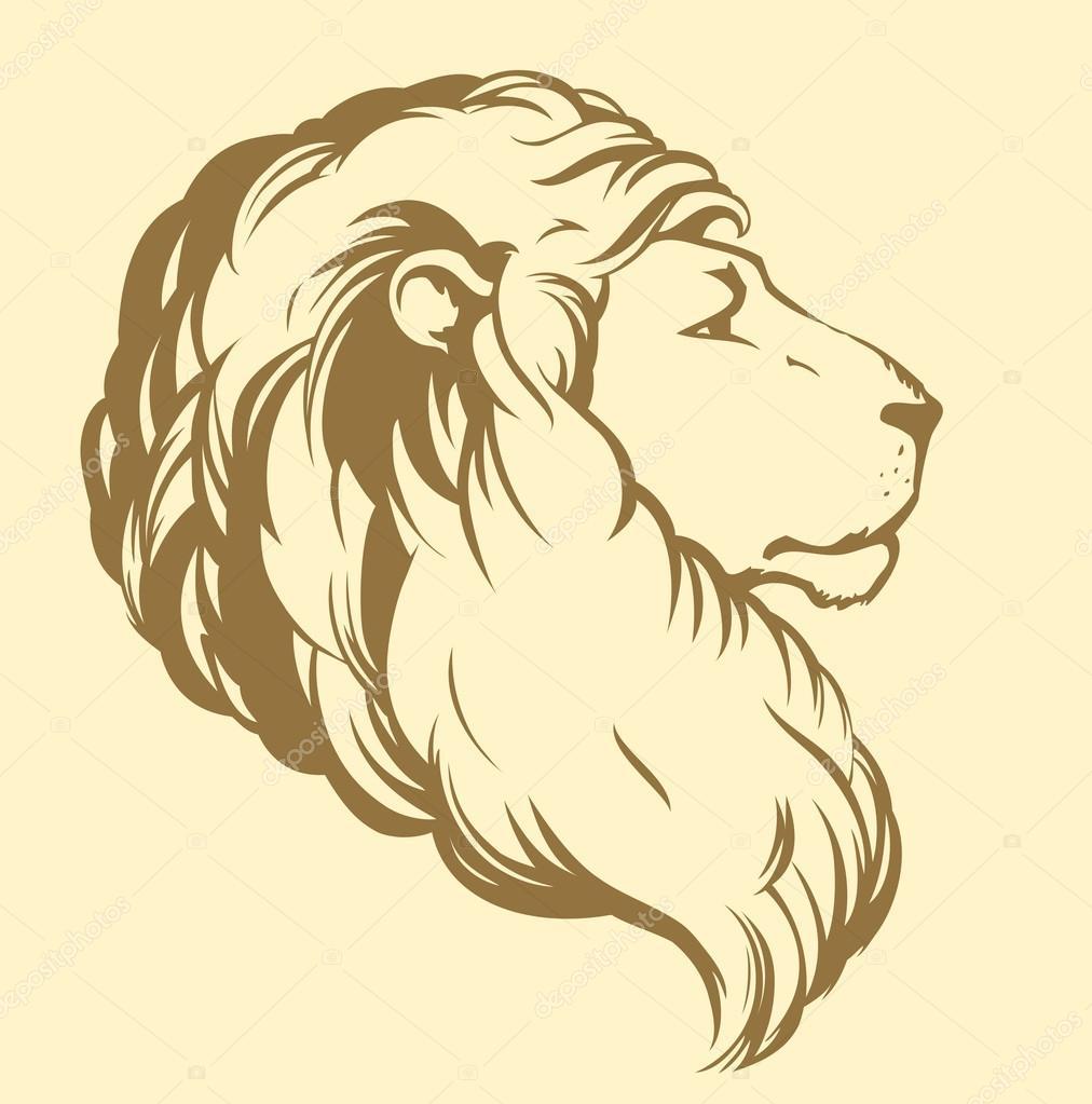 1012x1023 Lion. Vector Drawing Stock Vector Marinka