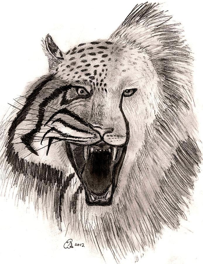 694x900 Feline Roar Drawing By Gail Schmiedlin