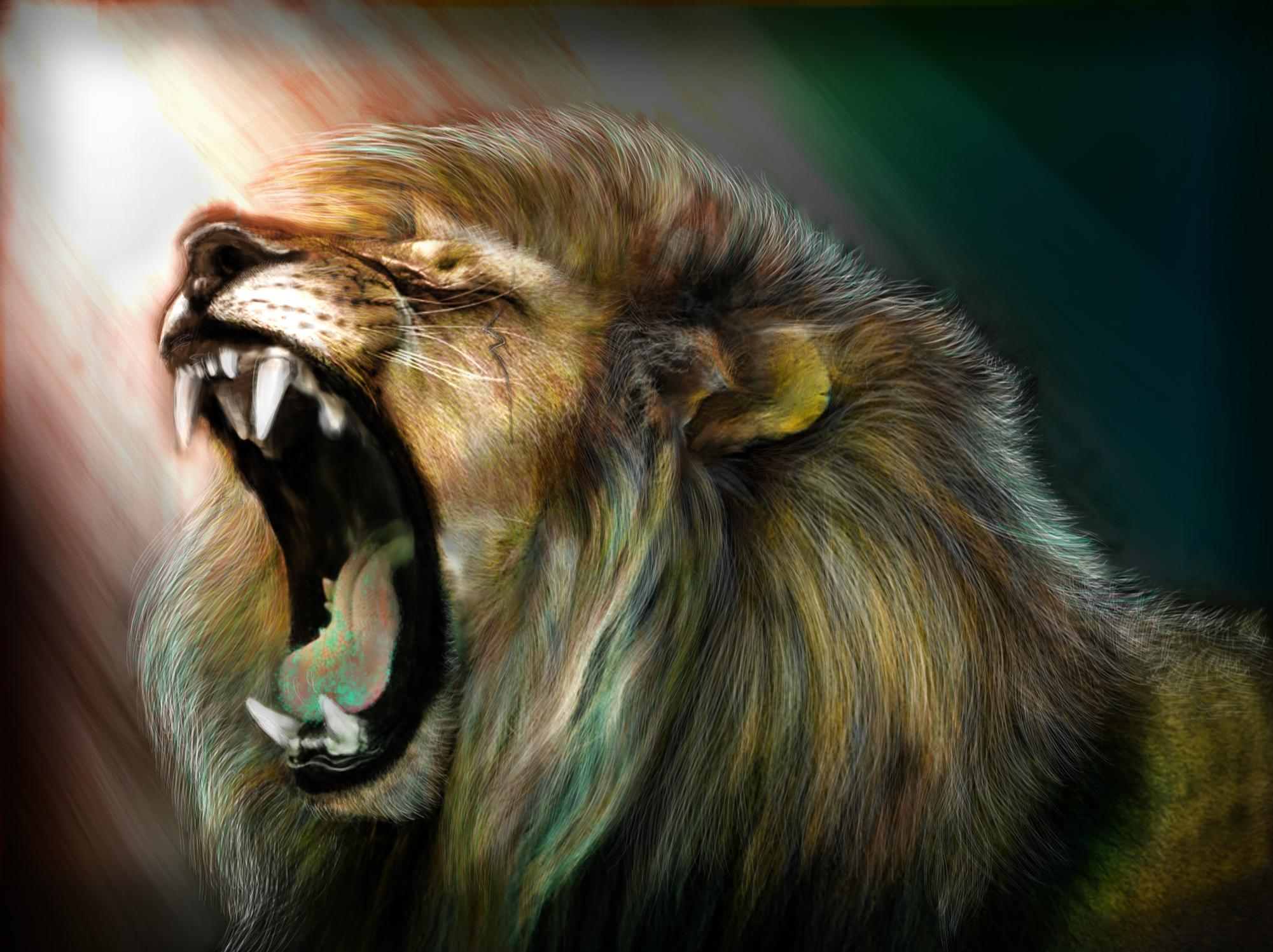2001x1497 Lion Roar Wallpaper