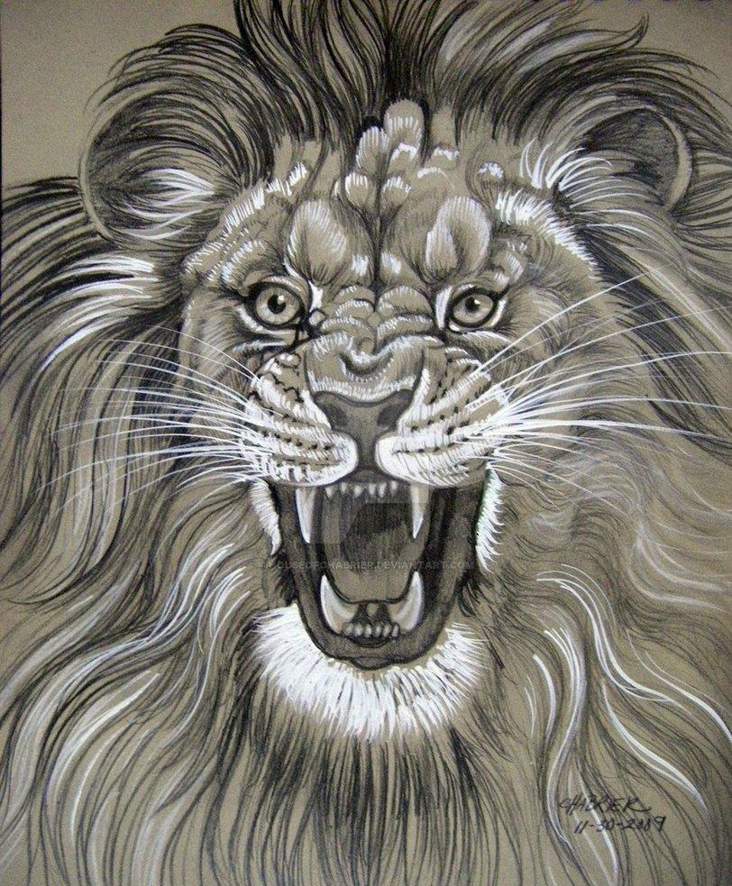 812x983 Lion Roaring Face Hd Images