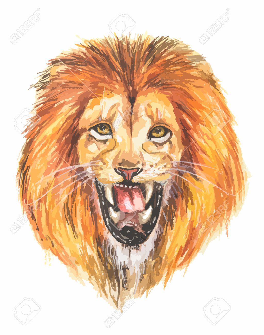 1025x1300 Watercolor Lion Roar. Big Fierce Lion Roaring. Hand Drawing