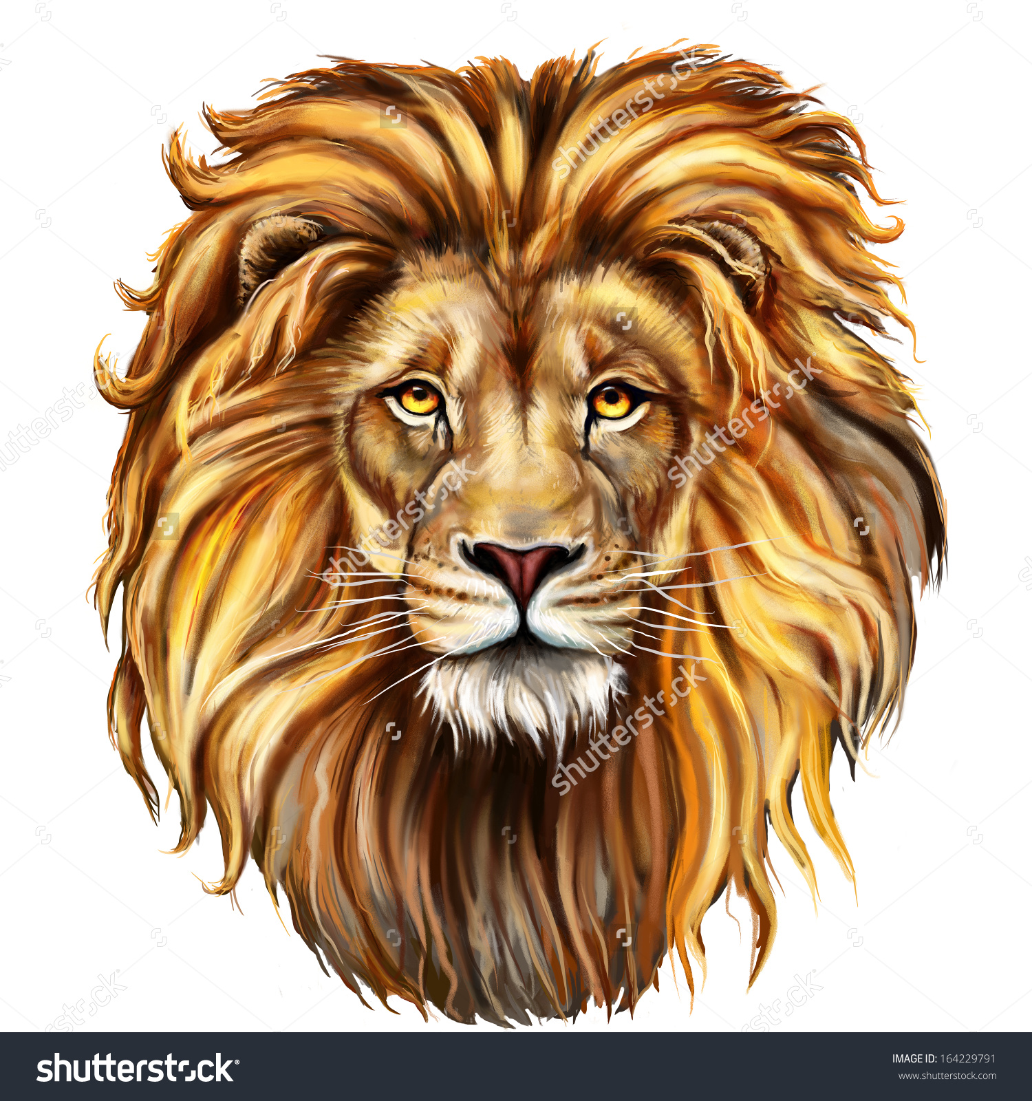 lion head drawing at getdrawingscom free for personal