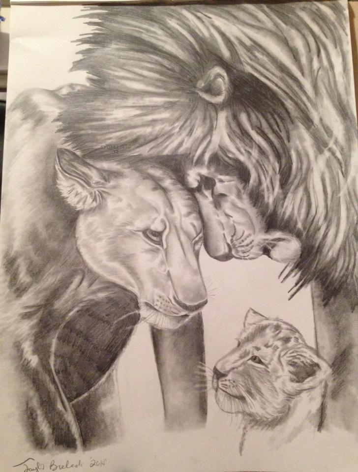 728x960 Lion Pride Drawing By Ozzedeth