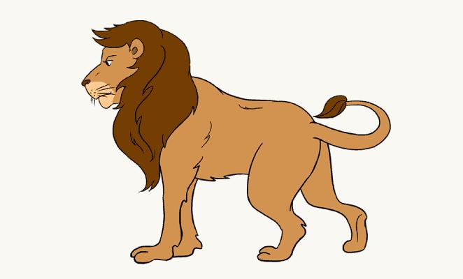662x400 Photos Lion Draw How,