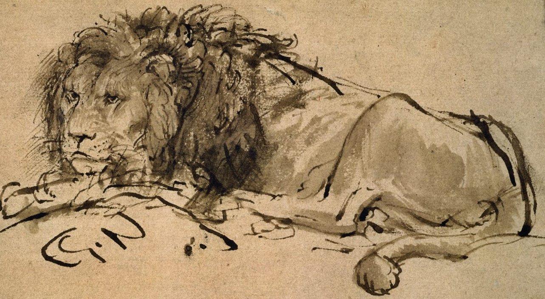 1283x705 Filerembrandt A Lion Lying Down 207063 Detail.jpg