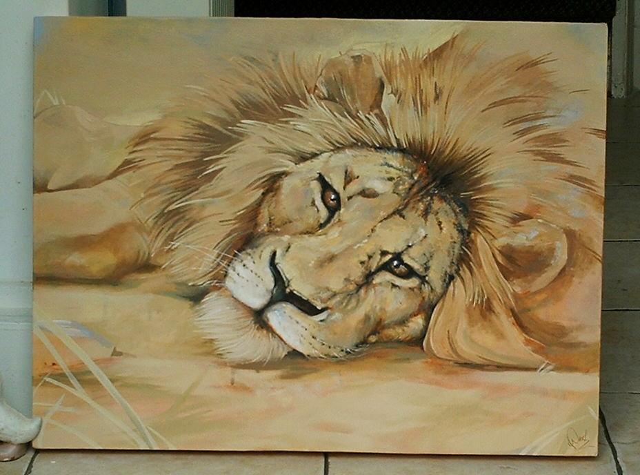 928x688 Lion Lying Down By Jpeckarts