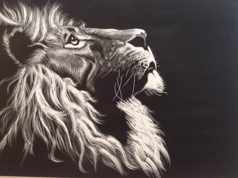 780x583 Drawing Of A Lion