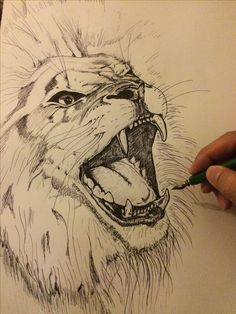 236x314 Lion Drawing A Step Inside My Mind Lion Drawing