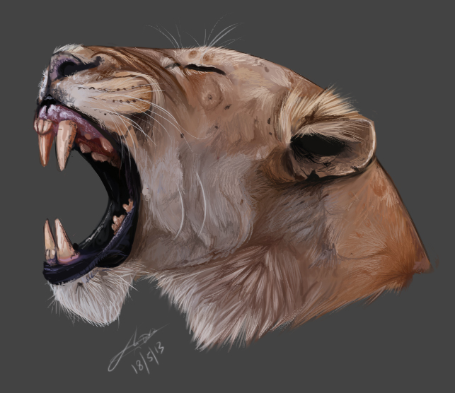 643x556 Lion Head