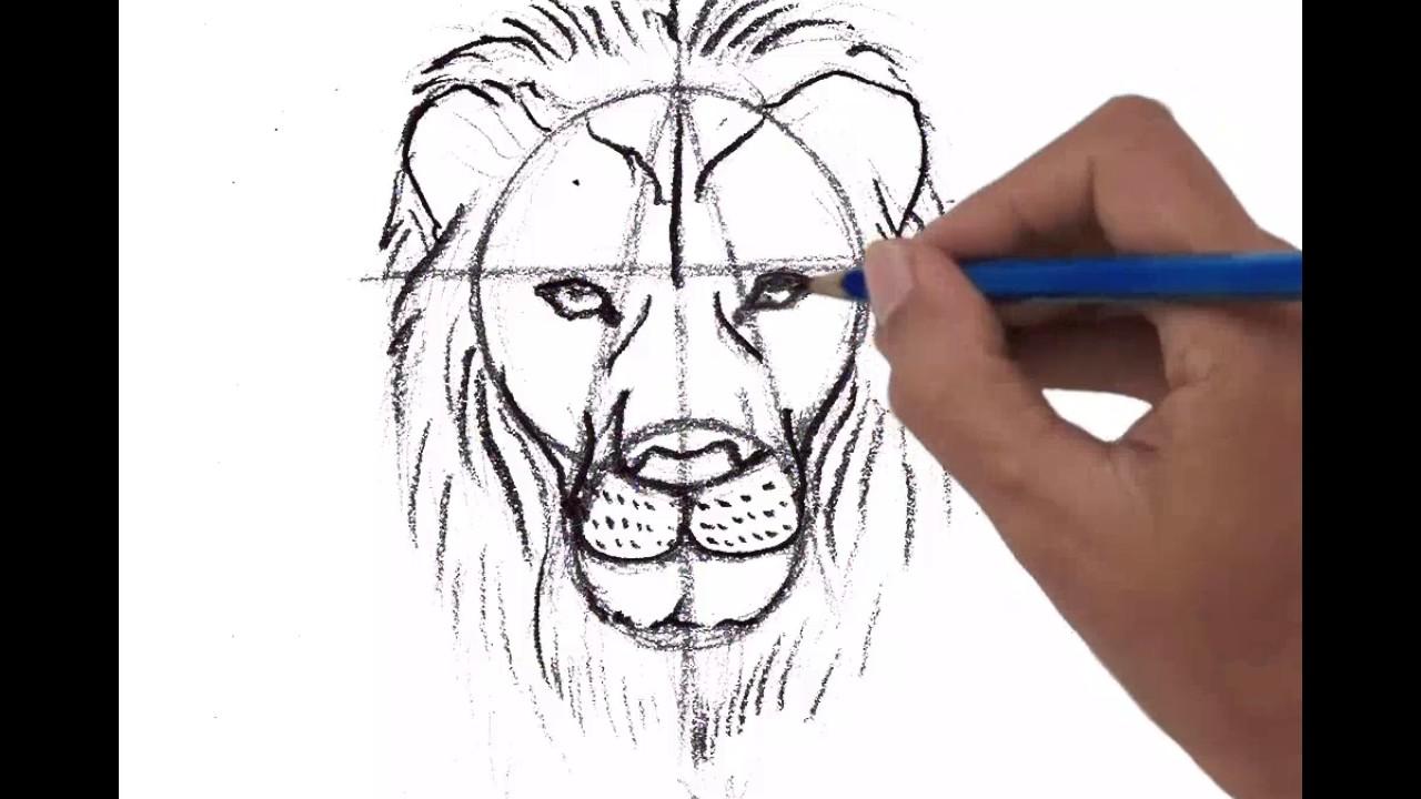 1280x720 Male Lion Head, Front View