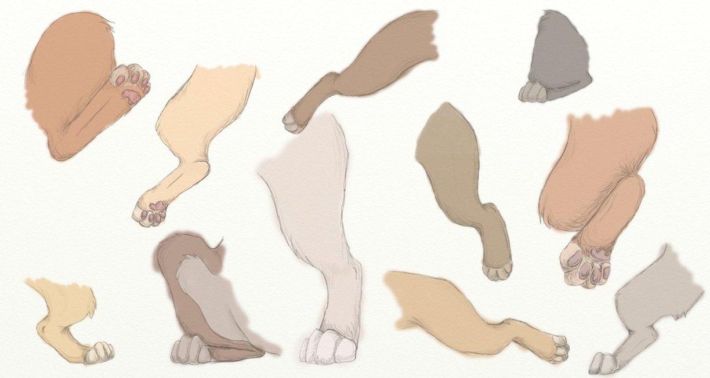 1224x652 Lion Legs Sketch (Back Legs) By Beestarart