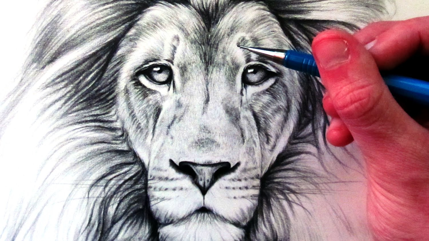 1500x844 Realistic Lion Drawing