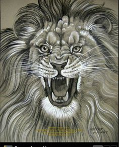 236x291 How To Draw A Lion Roaring, Roaring Lion, Step By Step, Safari