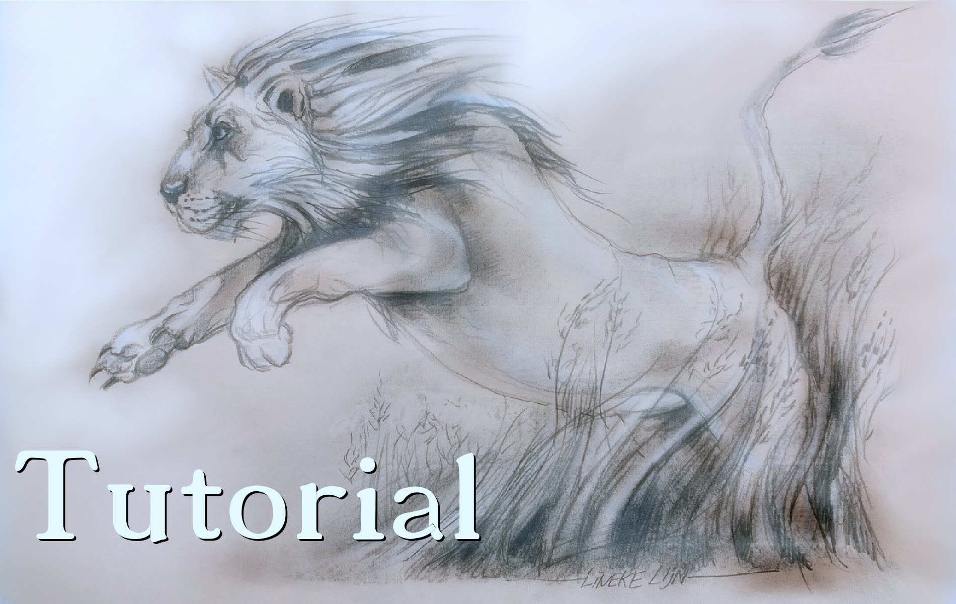 1900x1200 How To Draw A Jumping Lion Pencil Drawing