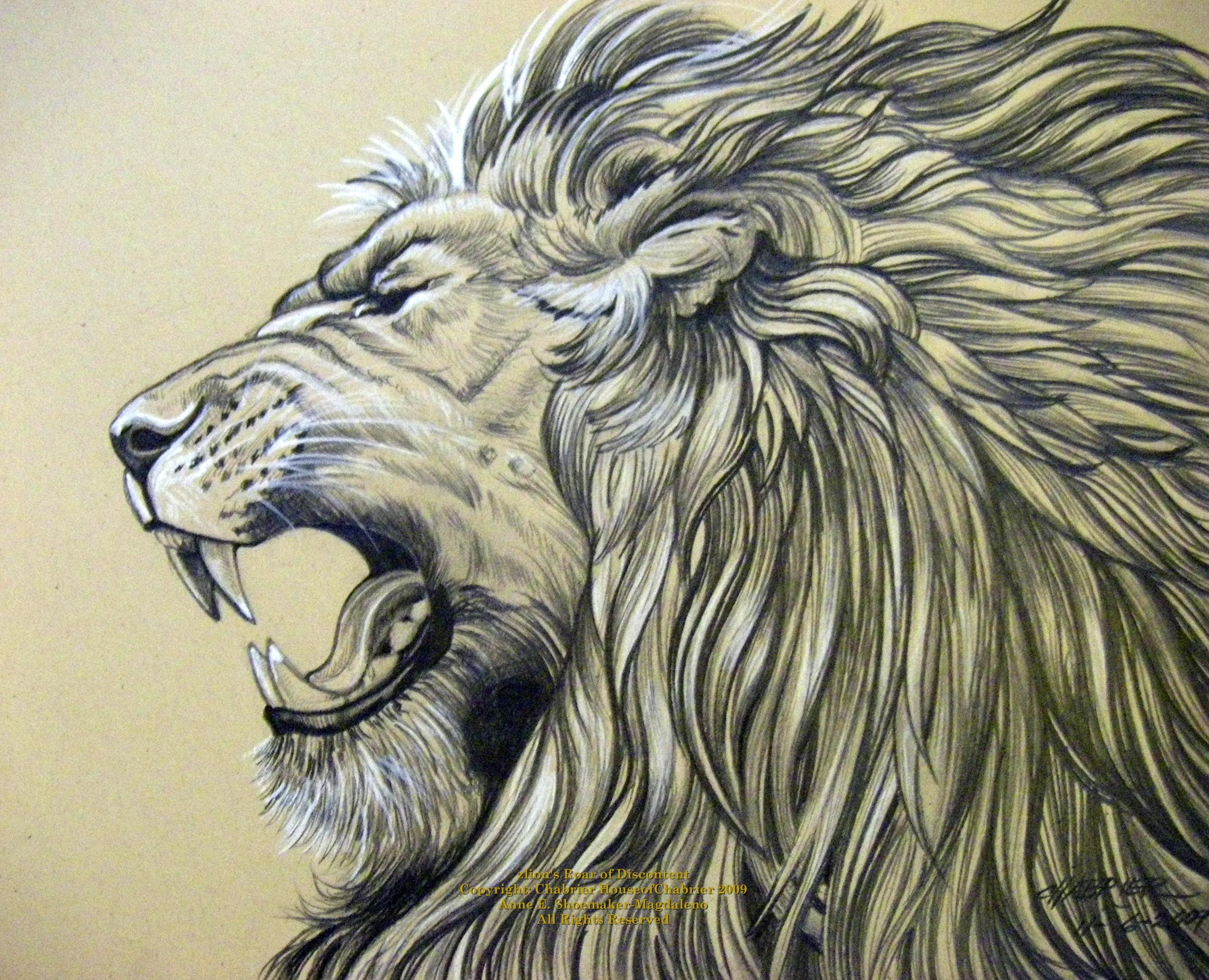 2864x2321 Pencil Sketch Of Roaring Lion