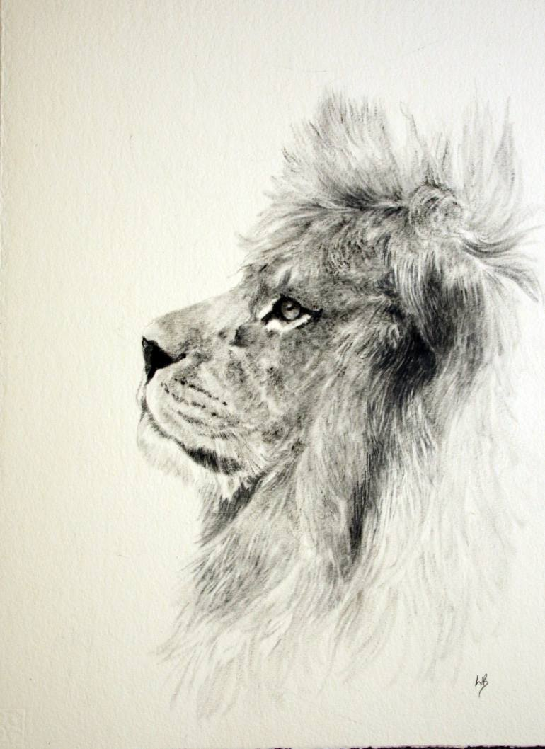 770x1058 Saatchi Art Barbary Lion Oil Sketch Painting By Lauren Bissell