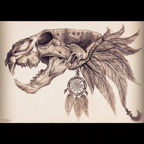 500x500 Crazy Lion Skull Drawing Projects To Try Lions