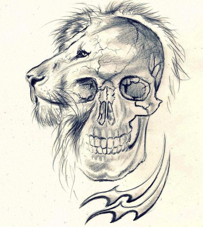 700x780 Lion Skull Aquarius By Cleicha
