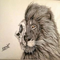 236x236 How To Draw A Lion Skull