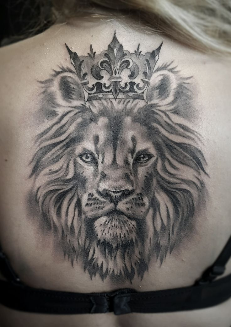 736x1041 21 Best Lion With Crown Tattoo Drawings Images