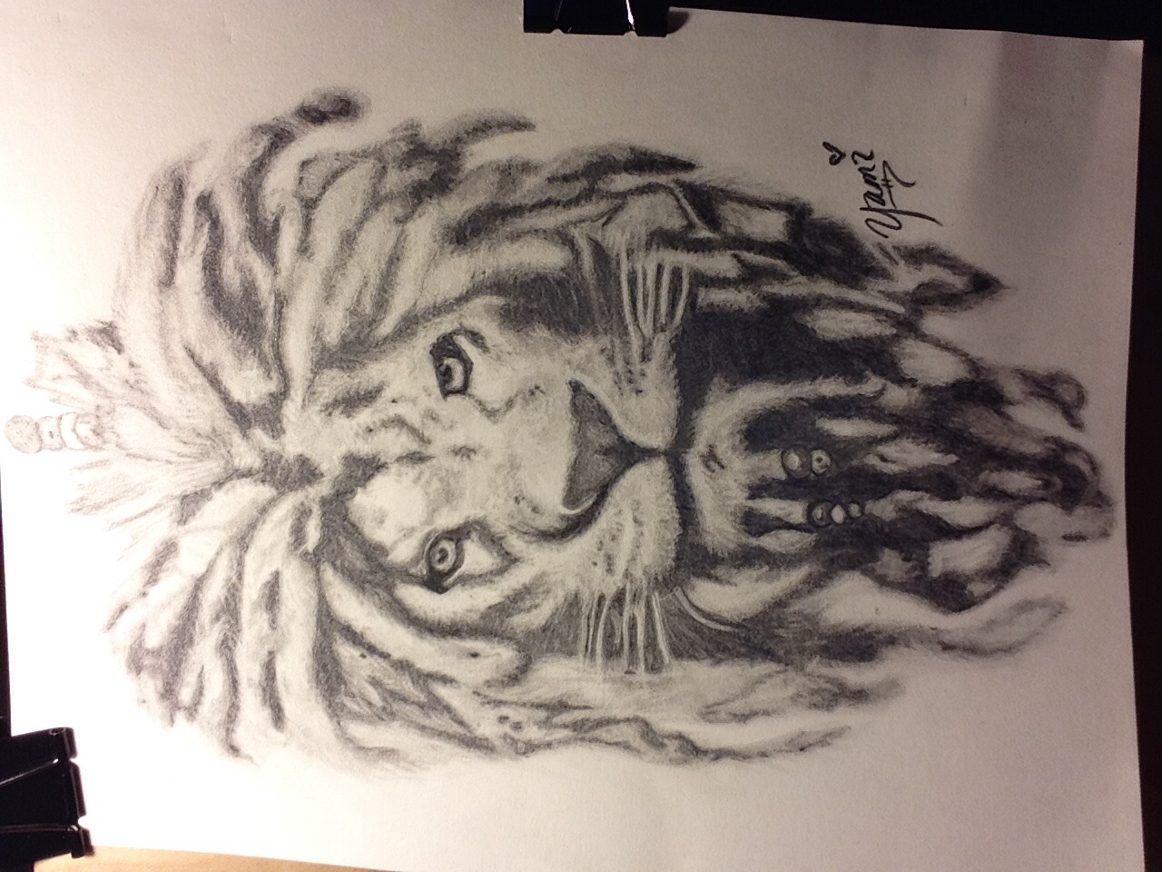 1280x960 Comissioned Project. Lion With Dreads. My Doodles