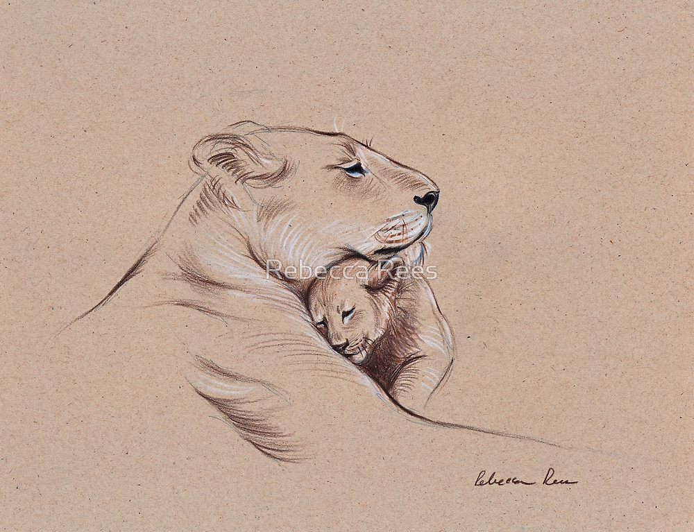 1000x767 A Mother's Pride Lioness And Cub Original Pencil Drawing. By