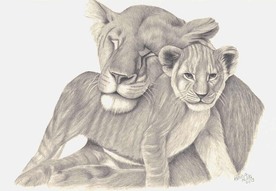 900x624 Lioness And Cub Drawing By Patricia Hiltz