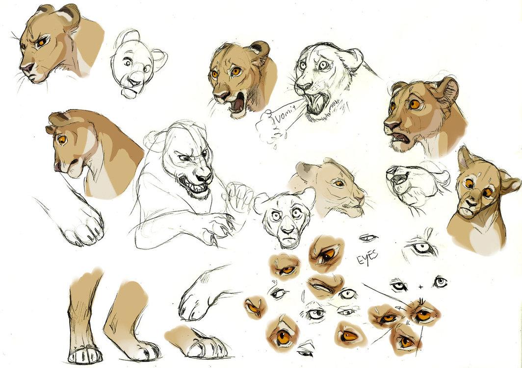 1064x751 Lioness Expression Studies By Esava