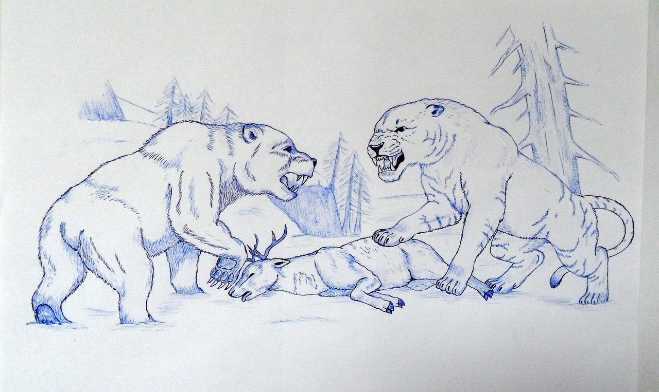1280x763 Cave Lion Vs Cave Bear By Javor911