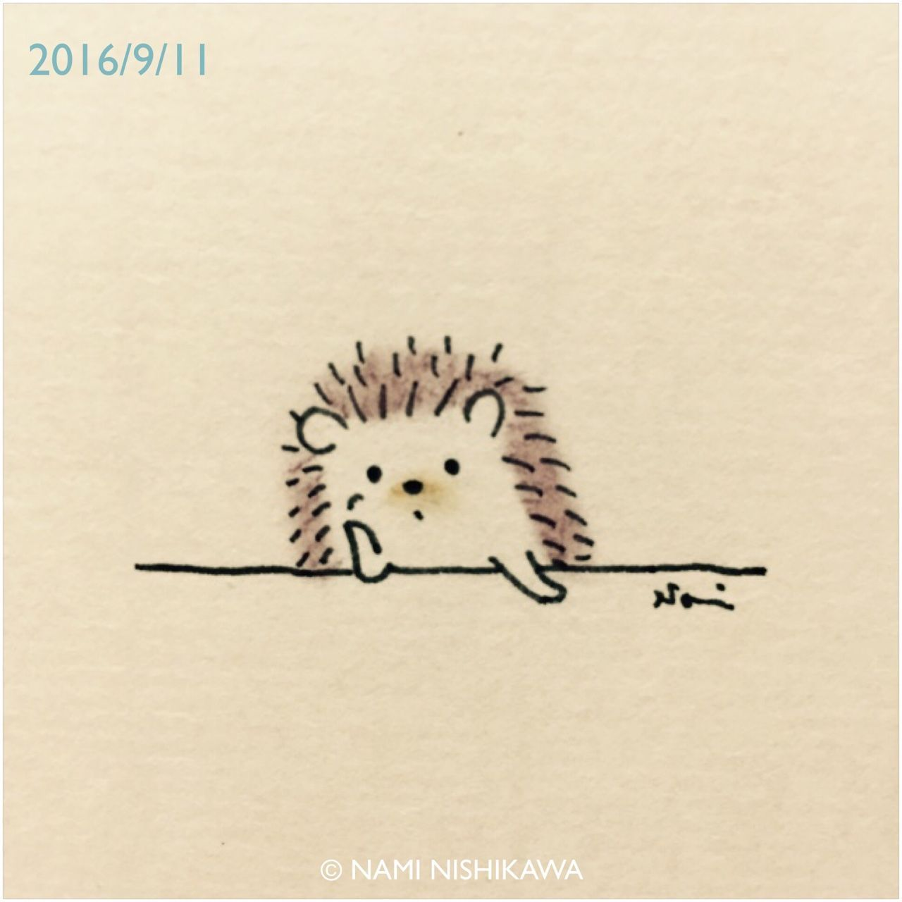1280x1280 Hedgehog