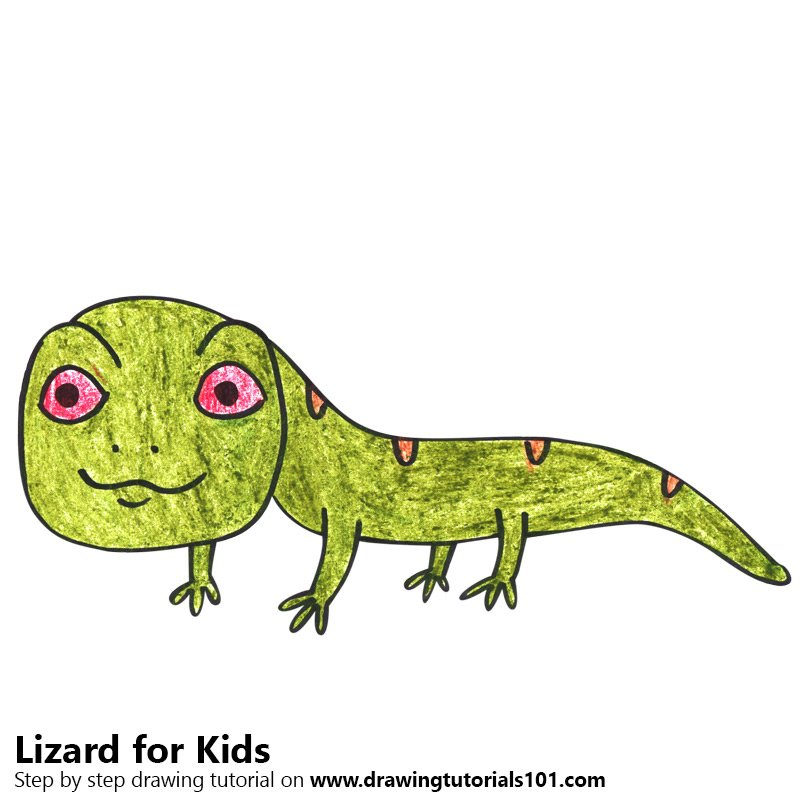800x800 Learn How To Draw A Lizard For Kids (Animals For Kids) Step By
