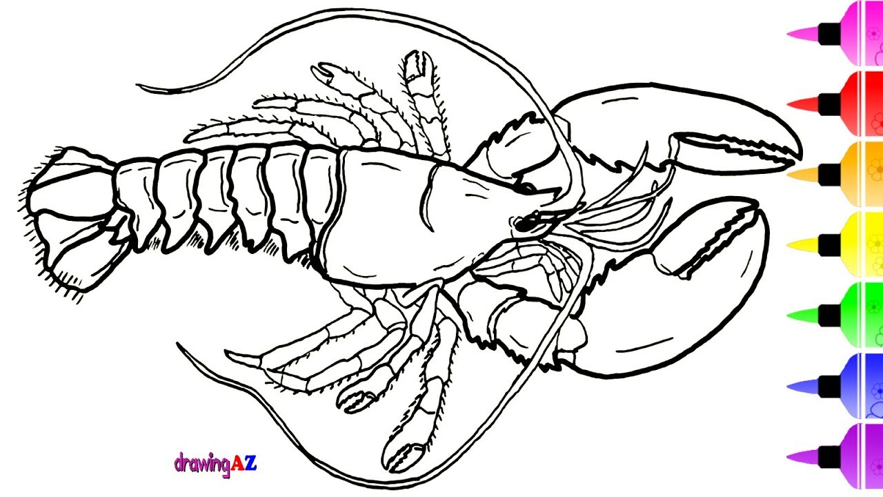 1280x720 American Blue Lobster Coloring Page For Kids Amp Dinosaur
